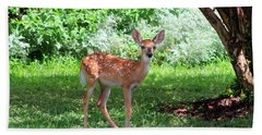 Whited-tailed Fawn - Face Of Innocence 2 Beach Sheet by Ella Kaye Dickey