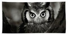 Whitefaced Owl Beach Towel