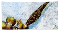 Beach Towel featuring the photograph Whitespotted Filefish by Perla Copernik