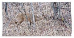 Beach Towel featuring the photograph Whitetail Deer 1171 by Michael Peychich