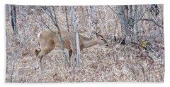 Whitetail Deer 1171 Beach Sheet by Michael Peychich