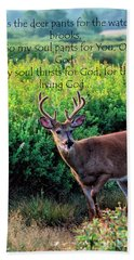 Whitetail Deer Panting Beach Towel