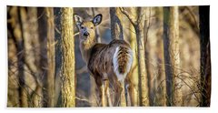 Whitetail Winter Morning Beach Towel