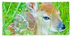 Whitetailed Deer Fawn Beach Towel