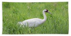Whooping Crane 2017-2 Beach Sheet by Thomas Young
