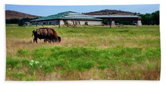 Beach Sheet featuring the photograph Wichita Mountain Wildlife Reserve Welcome Center I by Tamyra Ayles