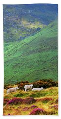 Beach Towel featuring the photograph Wicklow Pastoral by Jenny Rainbow
