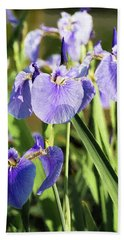 Wild Alaskan Irises IIi Beach Sheet