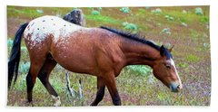 Wild Appaloosa Stallion Beach Sheet