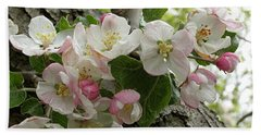 Beach Towel featuring the photograph Wild Apple Blossoms by Angie Rea