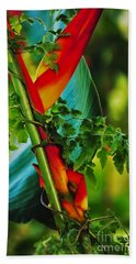 Wild Beauty Beach Towel