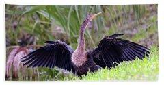 Beach Sheet featuring the photograph Wild Birds - Anhinga by Kerri Farley