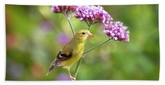 Beach Sheet featuring the photograph Wild Birds - Female Goldfinch by Kerri Farley