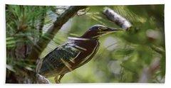 Beach Sheet featuring the photograph Wild Birds - Green Heron Tries To Hide by Kerri Farley