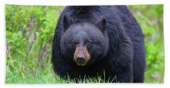 Wild Black Bear Beach Towel