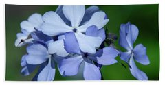 Wild Blue Phlox Dspf0387 Beach Sheet by Gerry Gantt