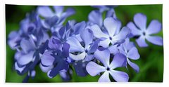 Wild Blue Phlox Dspf0391 Beach Sheet by Gerry Gantt