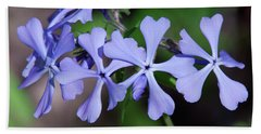 Wild Blue Phlox Dspf0392 Beach Sheet by Gerry Gantt