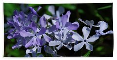 Beach Towel featuring the photograph Wild Blue Phlox Dspf0395 by Gerry Gantt