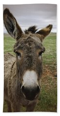 Wild Burro Beach Towel