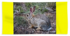 Wild Colorado Cottontail In The Brush Beach Sheet