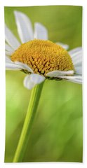 Wild Daisy Beach Sheet