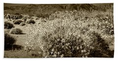 Beach Sheet featuring the photograph Wild Desert Flowers Blooming In Sepia Tone  by Randall Nyhof