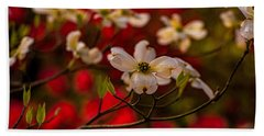 Wild Dogwood And Red Azaleas Beach Towel