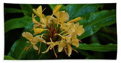 Beach Towel featuring the photograph Wild Ginger In The Rain by Craig Wood