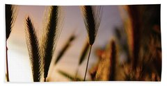 Wild Grasses At Sunset Beach Towel