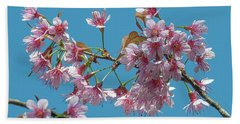 Wild Himalayan Cherry Dthn0220 Beach Sheet