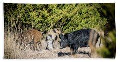 Wild Hogs Beach Sheet