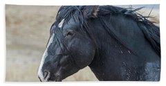 Wild Horse Profile Beach Sheet