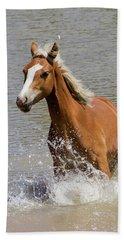 Wild Horse Splashing At The Water Hole Beach Towel