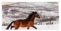 Wild Horse Beach Sheet