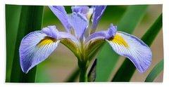 Wild Iris Beach Sheet by Kathy Eickenberg