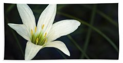 Beach Towel featuring the photograph Wild Lily by Carolyn Marshall