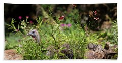 Wild Mama Turkey In The Garden Beach Towel