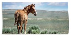 Wild Mustang Colt Of Sand Wash Basin Beach Towel