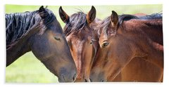 Wild Mustang Family Beach Towel