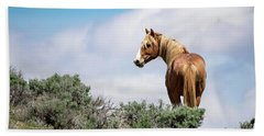 Wild Mustang Stallion Of Sand Wash Basin Beach Sheet