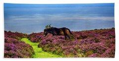 Wild Pony On Exmoor, Uk Beach Sheet