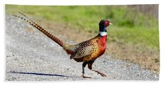 Wild Ring-neck Pheasant On The Move Beach Sheet