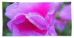 Wild Rose Beach Sheet
