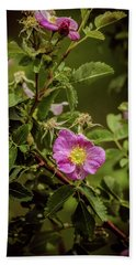 Wild Roses Of Summer Beach Sheet by Yeates Photography