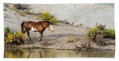 Wild Stallion Of Sand Wash Basin, Raindance Beach Towel