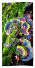 Wild Striped Mushroom Growing On Tree - Paradise Springs - Kettle Moraine State Forest Beach Towel by Jennifer Rondinelli Reilly - Fine Art Photography