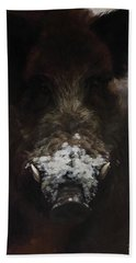 Wildboar With Snowy Snout Beach Towel