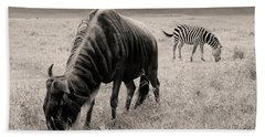Beach Towel featuring the photograph Wildebeest And Zebra by Stefano Buonamici