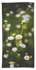Beach Towel featuring the photograph Wildflower Beauty by Shelby Young